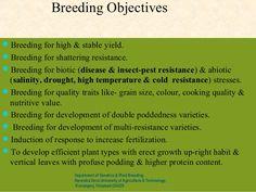 Breeding ObjectivesBreeding for high & stable yield.Breeding for shattering resistance.Breeding for biotic (disease & i...