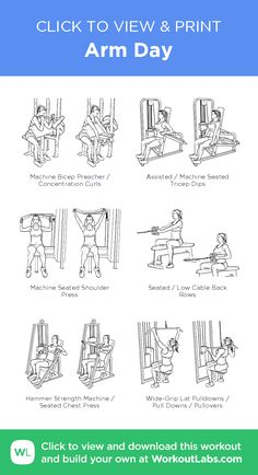 Arm Day · WorkoutLabs Fit - Zaynah Diet and Fitness Planet Fitness Workout Plan, Fun Fitness, Gym Workout Plan For Women, Gym Workouts Women, Fitness Workouts, Gym Routine Women, Gym Plan For Women, Gym Workouts For Legs, Weekly Gym Workouts