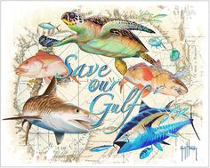 "Guy Harvey Art | out the Guy Harvey ""Save Our Gulf"" t-shirt designs and Guy Harvey ..."