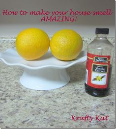 How to Make Your House Smell Amazing!