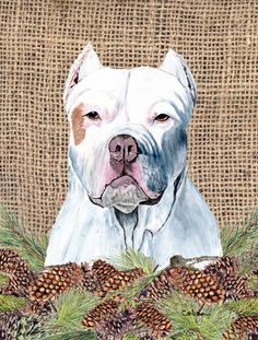 Pit Bull Flag Canvas House Size
