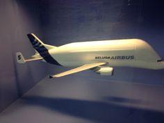 Beluga Airbus