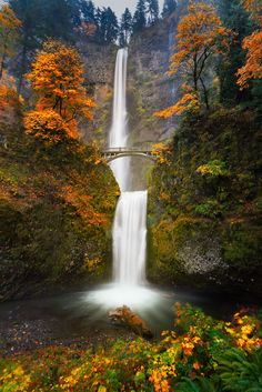 Multnomah Falls in Autumn Colors by William Lee on 500px