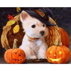 Chien Halloween, Halloween Puppy, Halloween Diy, Halloween Images, West Highland Terrier, Terriers, Paint By Number Kits, White Terrier, Dog Paintings