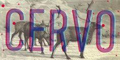 Cervo - Webfont