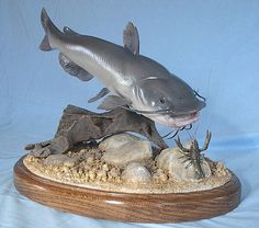 There are 4 primary types of wood sculpting: whittling, relief sculpting, sculpting in the . however you can utilize butternut and white pine for ne. Elephant Sculpture, Fish Sculpture, Fish Wood Carving, Fish Mounts, Channel Catfish, Taxidermy Display, Wood Carving For Beginners, Wood Fish, Wildlife Paintings