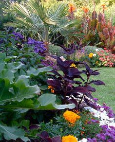 Seattle Garden Designer Michael Muro. Tropical plants