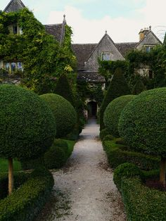 "@Kimberly Barton >  The sculpted bushes and the green growth atop part of the house reminds me of a stroll through an ""Alice in Wonderland"" approach to the mysterious and partially hidden entrance.   Garden Design / repinned by Toby Designs"