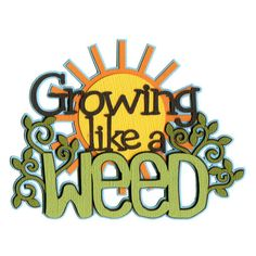 Growing like a Weed Laser Die Cut ($4.50) ❤ liked on Polyvore