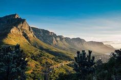 12 Apostles from Lion's Head #capetown #tablemountain #12apostles #landscape #photooftheday #southafrica #mountains by tyronlouwphoto http://ift.tt/1ijk11S