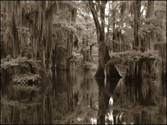 James Parish at the Felicity Plantation, although within the movie they claim the location is in the swamps of Terrbonne Parish. Description from louisiana-studies400.wikispaces.com. I searched for this on bing.com/images
