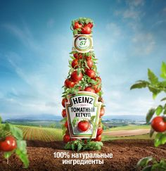 Heinz Ketchup tomate bottle on Behance Creative Advertising, Ads Creative, Creative Posters, Advertising Poster, Advertising Design, Creative Design, Product Advertising, Advertising Campaign, Blender 3d