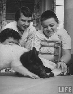 Francis Miller - Terapia de animales a niños hospitalizados 1956
