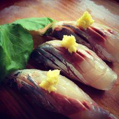 Aji (spanish mackerel) nigiri