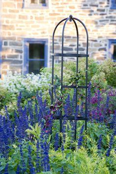 Essex Tuteurs for the Garden   Buy from Gardener's Supply