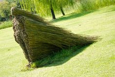 Artist: Olga Ziemska using tree branches placed to create a 3-dimensional figure