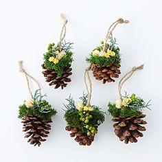 【ネット限定】松かさオーナメント 5個セット 白 | 無印良品ネットストア Pine Cone Christmas Tree, Christmas Mood, Christmas Wreaths, Christmas Ornaments, Christmas Arrangements, Christmas Centerpieces, Xmas Decorations, Pinecone Centerpiece, Pine Cone Crafts