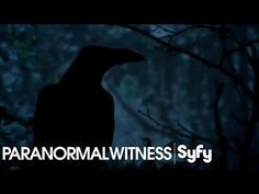 New post on Getmybuzzup TV- PARANORMAL WITNESS (Clips) | The Devil Himself | Syfy- http://wp.me/p7uYSk-uJI- Please Share