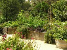 The Landscape Designer Is In: Creating and Maintaining a Thriving Kitchen Garden - Gardenista Edible Garden, Garden Pots, Vegetable Garden, Garden Trellis, Outdoor Plants, Outdoor Gardens, Modern Gardens, Landscape Design, Garden Design