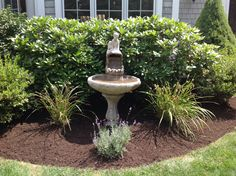 """""""A boy and his dog"""" water fountain birdbath surrounded by rhododendron, azaleas, daylilys and lavender."""
