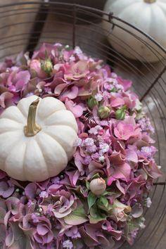 hortensien, kranz aus hortensien, hortensienkranz, alte schätze, trouvaillen, brocanteartikel, brocante. alter erntekorb, erntekorb, babyboo