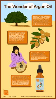What is Argan Oil? | Infographic | Beta Naturals