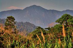 Águas de Pontal: Fundação destina R$ 1,5 milhão a projetos de conse...