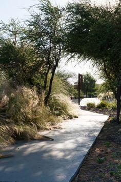 Quilapilun_Botanic_Garden_Park-Panorama_Architects-10-SW « Landscape Architecture Works | Landezine