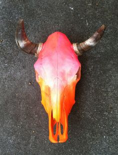 Ombre Painted Real Cow Skull with Horns by TheAloeShack on Etsy. I think this is the first ombre paint job on a skull that I've seen and liked. Cow Skull Decor, Cow Skull Art, Skull Artwork, Skull Painting, Sugar Skull Art, Skull With Horns, Skull And Bones, Bull Skulls, Longhorn Skulls