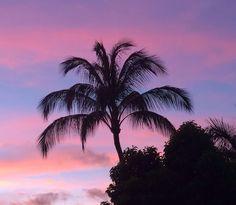 Summer sunset -Maui Beauty