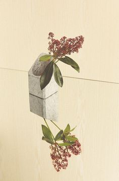 Winter Blooms, Birch 2 | Sarah Otley