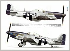 Image result for p51 mustang nose color
