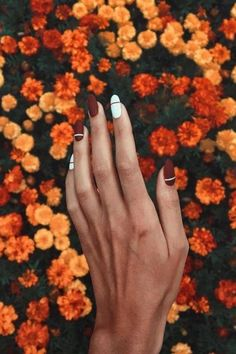 Decorated Nails: This is the manicure you do in this he .- Verzierte Nägel: Dies ist die Maniküre, die Sie in diesem Herbst tragen werden Decorated nails: this is the manicure you& be wearing this fall – - Oval Nail Art, Oval Nails, Us Nails, Hair And Nails, Shellac Nails, Matte Nails, Black Nails, Nails 2018, Black Polish