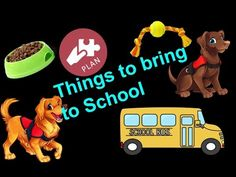 WHAT TO BRING TO SCHOOL FOR YOUR SERVICE DOG - YouTube