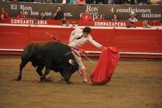 Debut del torero Juan Del Alamo en Manzales, 7 de enero de 2014, 2 orejas.