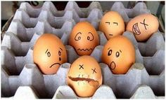 eggs + students = good or bad?