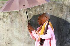 Nuns, Myanmar - null