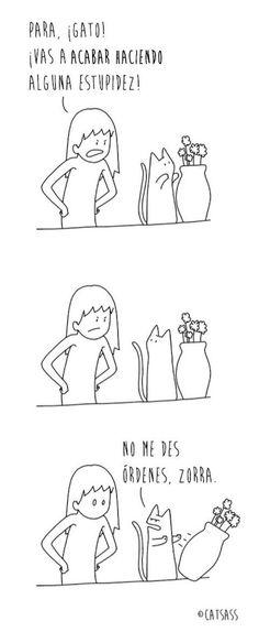 Las viñetas de CatAss reflejan lo bordes que pueden llegar a ser los gatos.