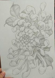 Japanese Tattoo Designs, Flower Tattoo Designs, Crisantemo Tattoo, Desenho Tattoo, Hand Embroidery Stitches, Chrysanthemum, Blackwork, Tatting, Drawings