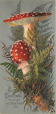 Christmas~Red White Polka Dot Mushrooms~Olve Green Fern~Emboss~1880 Victorian TC