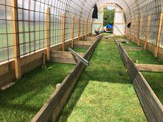 Bygga ett Tunnelväxthus av Sofie Persson | PANKPRAKTIKAN Tunnel Greenhouse, Backyard Greenhouse, Greenhouse Plans, Backyard Landscaping, Growing Plants, Growing Vegetables, Vertical Vegetable Gardens, Cinder Block Garden, Farm Plans