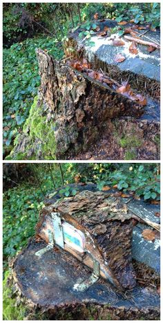 Not your typical fake log or stump. A wedge of wood is hinged to the stump; swing it up to reveal the container. Just make sure it's on your own land or you have permission to modify the stump. (photos from Twitter stitched together & pinned to Creative Geocache Containers - pinterest.com/islandbuttons/creative-geocache-containers/)