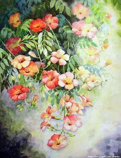 Xray Flower, Flower Art, Painting & Drawing, Watercolor Paintings, Watercolor Flowers, Daisy, Nail Designs, Art Gallery, Wallpaper