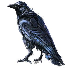 Deviser - Illustrative interpretation of the Crow by Dixun Sun to inspire the new tattoo....maybe bye bye to the puffins. But, I need 2