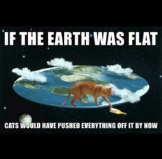 If earth was flat cats would've pushed everything off by now lol