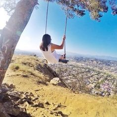 elysian park swing - Yahoo Image Search Results
