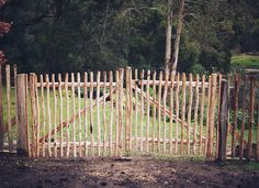 Garden Gate (whole larder love blog)