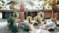 Palm Springs love | A mid-century home once featured in Playboy transforms into a modern desert fantasy
