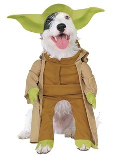 Check out Yoda Pet Costume - Pet Star Wars Costumes from Anytime Costumes