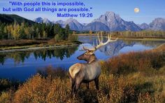 """MATTHEW 19:26  26 Jesus looked at them and said, """"This is something that people cannot do. But God can do anything."""""""
